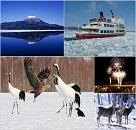 冬の風物詩「流氷」と「タンチョウ」に出会う旅 のイメージ