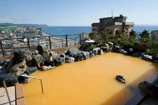 函館・湯の川・大沼フリープラン