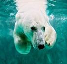 人気の動物園でかわいい生き物に癒されよう♪のイメージ