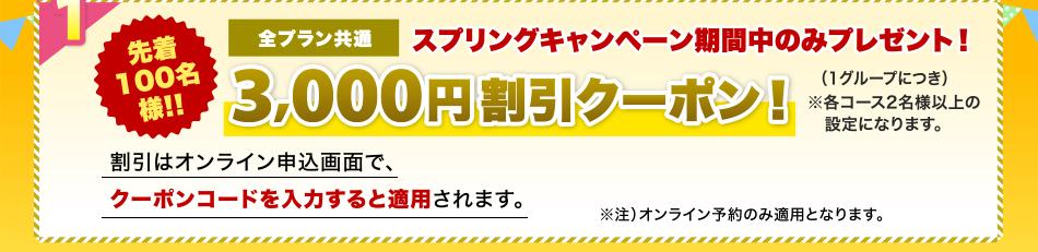 各空港で使える商品券1,000円付