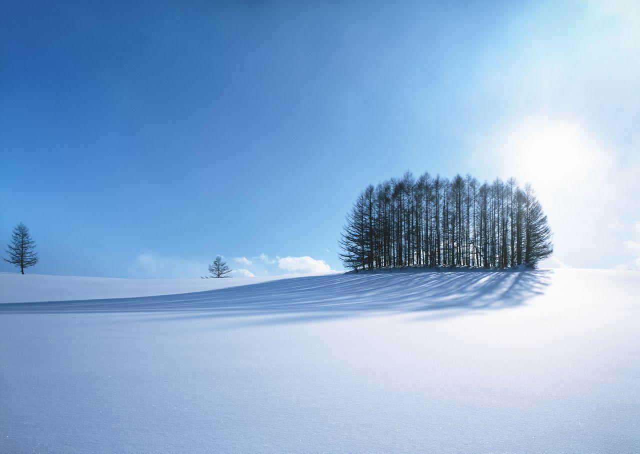 《冬旅》富良野・美瑛と道央周遊