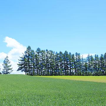 マイプラン北海道