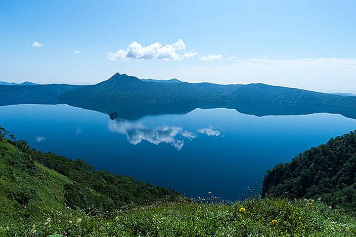 北海道早得夏