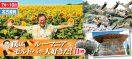 【名古屋発】5月〜10月 僕はルーマニア・モルドバが大好きだ! 11日間