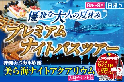 8月〜9月 優雅な大人の夏休み♪プレミアムナイトバスツアー