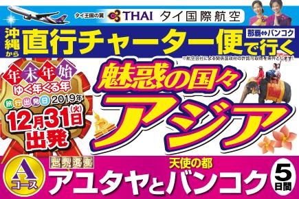 【12/31出発】直行チャーター便で行く(Aコース)