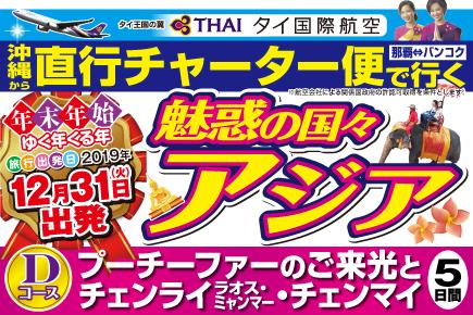 【12/31出発】直行チャーター便で行く(Dコース)