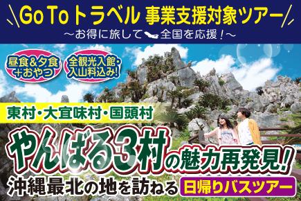 やんばる3村の魅力再発見! 沖縄最北の地を訪ねる日帰りバスツアー