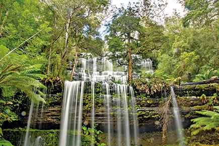 《世界遺産》マウントフィールド国立公園(タスマニア)