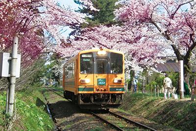 津軽鉄道(お花見列車)